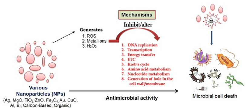 Mechanisms for the antimicrobial effect of nanoparticles