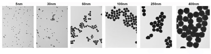 Basic Gold Nanoparticles