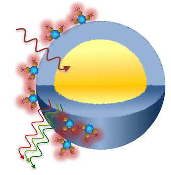 Custom Upconverting Nanoparticle Conjugation
