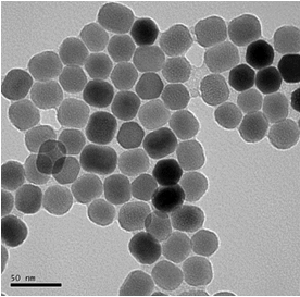 DiagNano™ Gold Nanoparticles