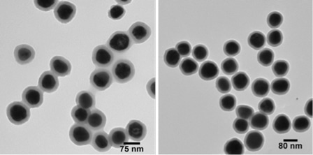 Fluorescent Silver Nanoparticles