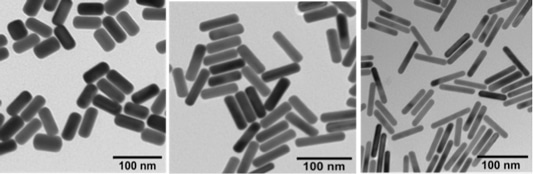 Functional Gold Nanorods