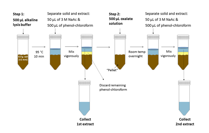 Schematic illustration of traditional isolation of nucleic acids in the fluid phase.