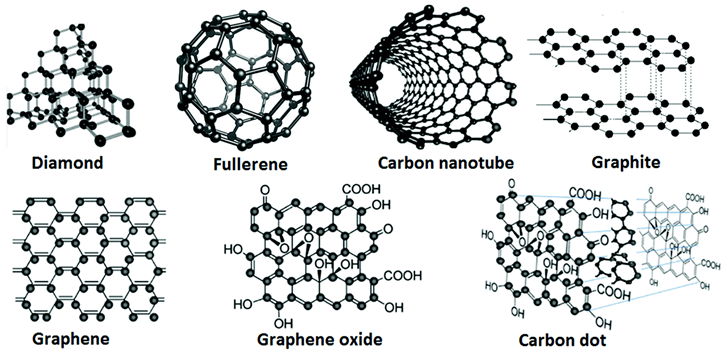 The schematics of the representative carbon-based nanomaterials