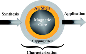 gold-coated-magnetic-particles.png